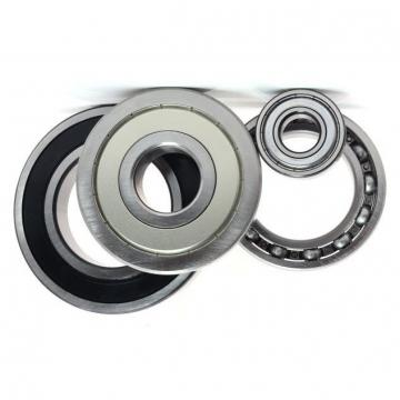 China Brand Angular Contact Ball Bearing (3309)