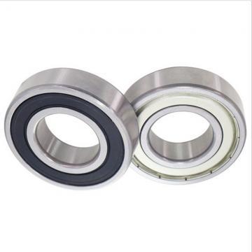 45*100*25mm 6309zz 6309z 6309 T309 309K 309S 309 3309 1309 10b Zz 2z Z Nr Zn Metal Shields Metric Single Row Deep Groove Ball Bearing for Motor AG Industry