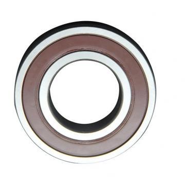 Deep Groove Ball Bearing 61805 6000 6001 6008 6018 Ball Bearing Distributor